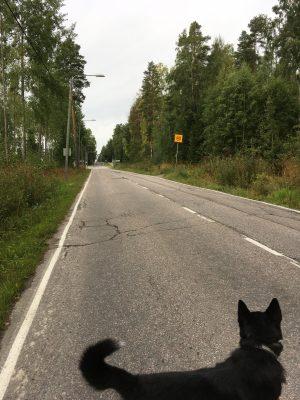 Viisi km tietä = yksi koulurakennus